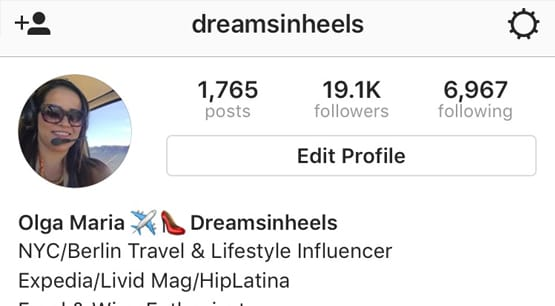 Follower Count Instagram